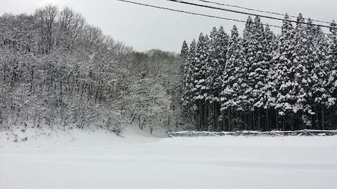 20140112山へ向かう途中の風景6