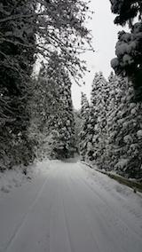 20140112山から帰る途中の様子