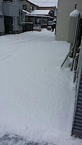 20140209雪寄せ1