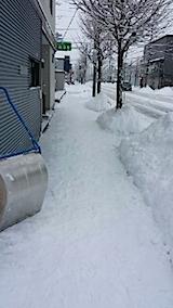 20140209雪寄せ4