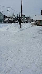 201401209雪寄せ9