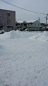 20140209雪寄せ8