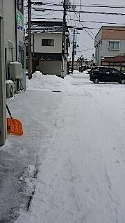 20140211雪寄せ2