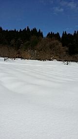 20140213ラベンダーの畑1
