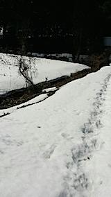 20140317ラベンダーの畑へと向かう坂道