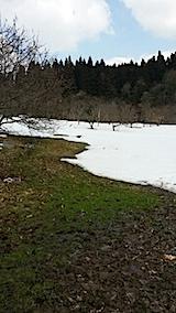 20140317山の様子4