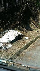 20140413山からの帰り道の様子1