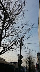 20140416外の様子夕方3