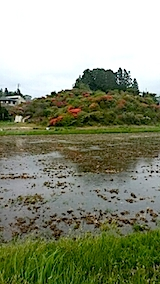 20140513ツツジの咲く丘の風景