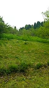 20140514草刈り前
