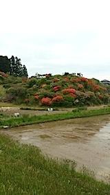 20140515ツツジの咲く丘の風景1