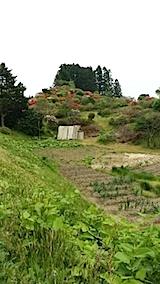 20140515ツツジの咲く丘の風景2