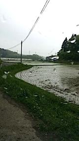 20140516突然の雨1