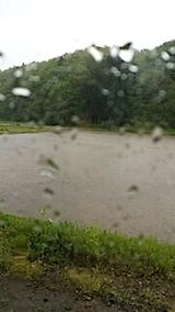 20140516突然の雨2