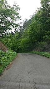 20140518山へ向かう途中の峠道の様子