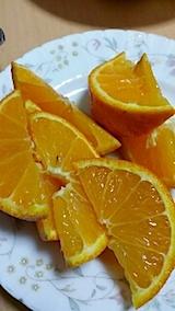20140518オレンジ