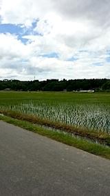 20140608山へ向かう途中の田んぼの様子