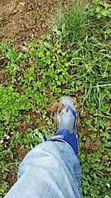 20140614長靴がドロだらけ