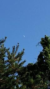 20140705東の空にお月さま