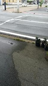20140713雨が降り始める昼過ぎ