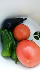 20140714今日収穫した野菜