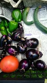 20140910収穫した野菜