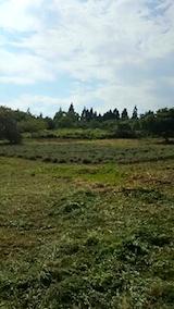 20140910ラベンダー畑の様子3