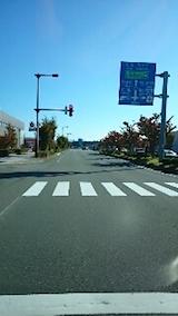 20141007街路樹が紅葉