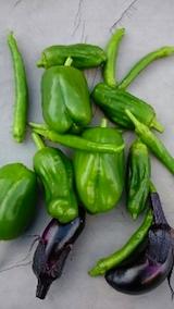 20141007収穫した野菜