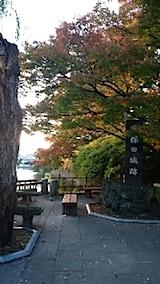 20141009千秋公園の紅葉5
