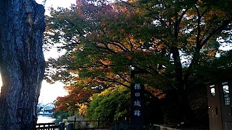 20141009千秋公園の紅葉2