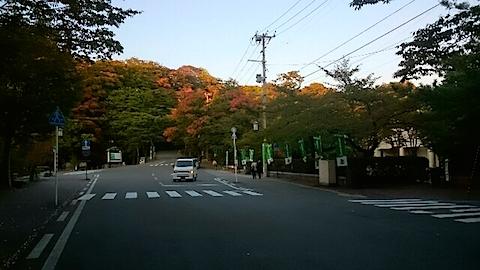 20141009千秋公園の紅葉3