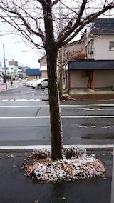 20141205外の様子雪降りだす2