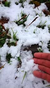 20141205とけた雪が氷始める