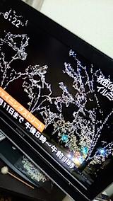 20141205秋田の冬の空を彩るイルミネーション大館3