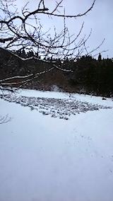 20141206ラベンダー畑1