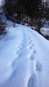 20150113ラベンダーの畑へと向かう急な坂道の様子