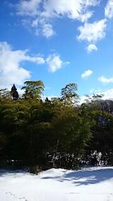 20150113山の様子2