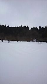 20150210ラベンダーの畑