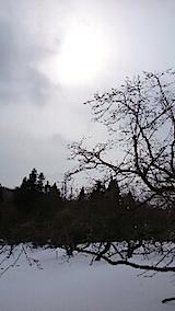 20150211山の様子1