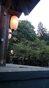 20150429薄墨桜5