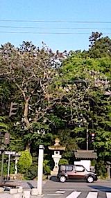 20150513伊佐須美神社