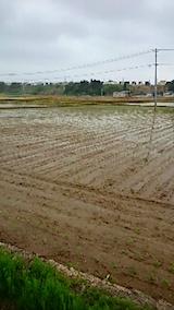 20150514秋田市の田植えが始まる1