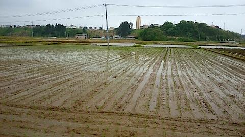 20150514秋田市の田植えが始まる2