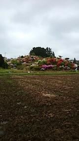 20150514ツツジの咲く丘の風景