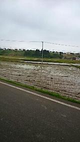 20150514秋田市の田植えが始まる4