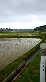 20150514秋田市の田植えが始まる8