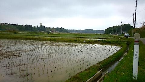 20150514秋田市の田植えが始まる6