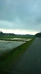 20150514山からの帰り道の様子田植えの済んだ田んぼ