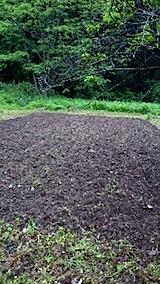 20150516山の様子野菜の畑